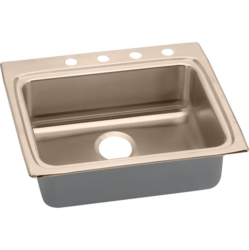 Elkay Drop In Kitchen Sinks item LRAD2522552-CU
